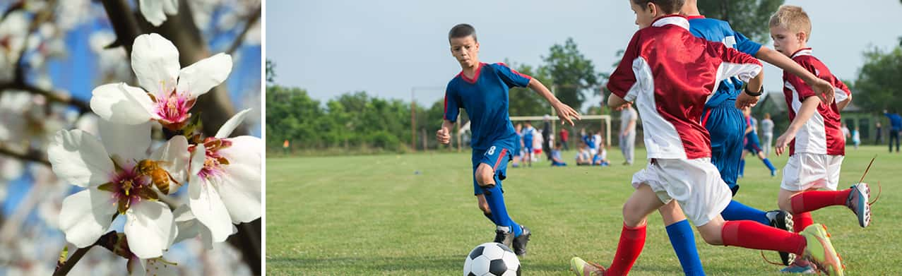 Soccer Game - Active Lifestyle at Stonefield Home
